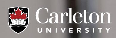 卡爾頓大學